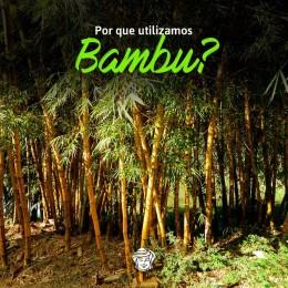 Por que utilizamos Bambu?